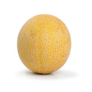 """Honigmelone """"Galia"""""""