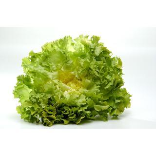 ..Endivien Salat