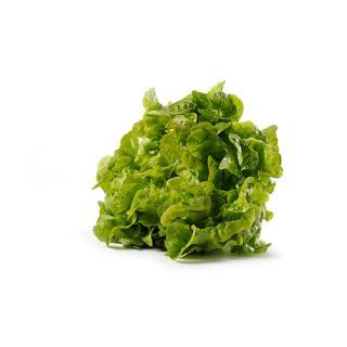 ..Grüner Batavia Salat