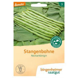 """Stangenbohne """"Neckarkönigin"""""""