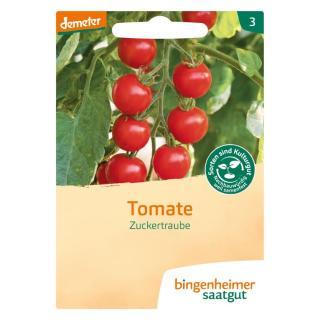 """Tomate """"Zuckertraube"""""""