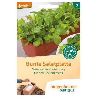 Bunte Salatplatte, würzige Mischung